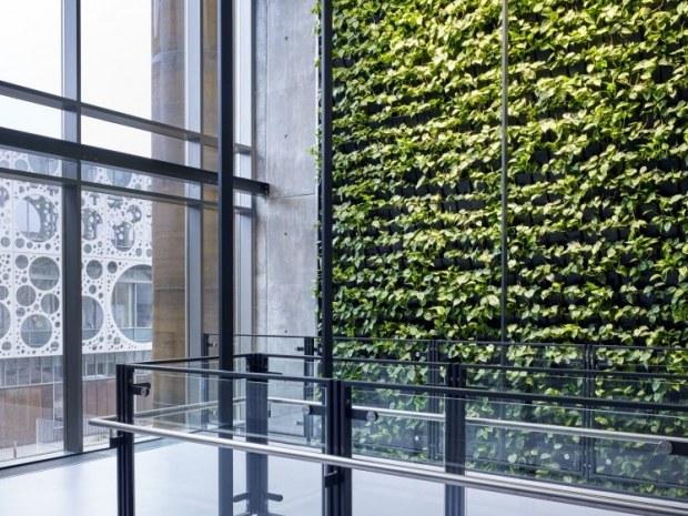 Syddansk Universitet, Bygning 44 - Plantevæg