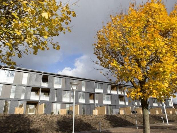 Sønderparken, afd. 406 - Materialerne