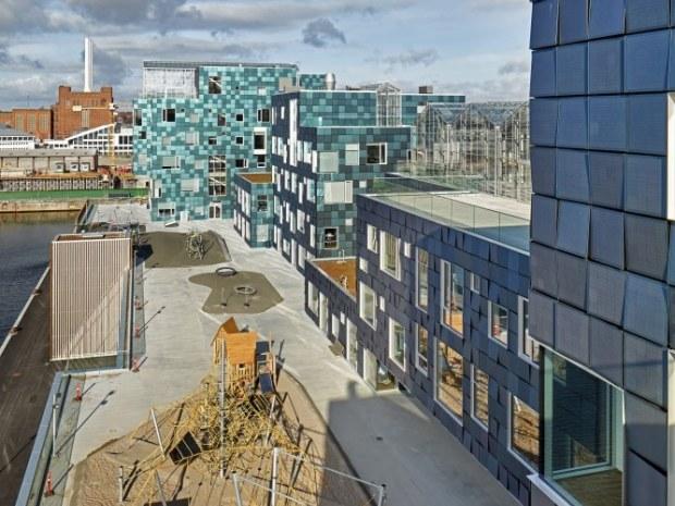 Copenhagen International School - Tagarealerne