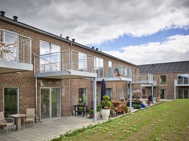 Morelgrenen og Mirabellegrenen - terrasser