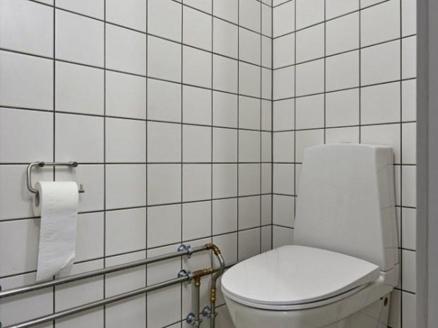 Ungdomsøen - toilet