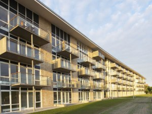university of essex studieboliger randers