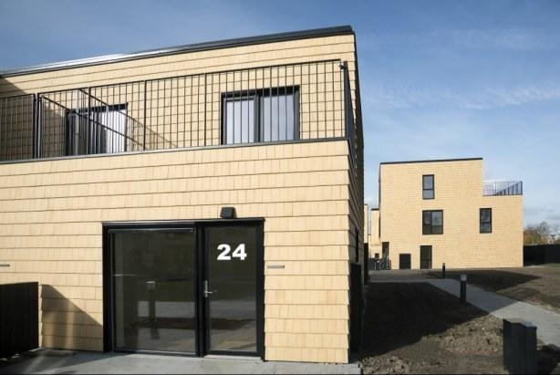 Alberts have   altan : foto : byggeplads.dk