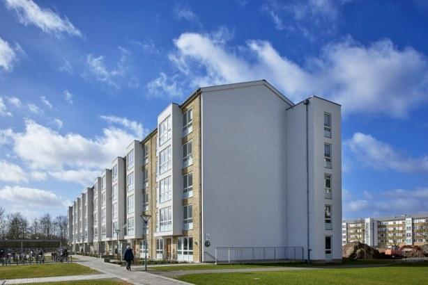 Korsløkkeparken - Udendørsarealerne